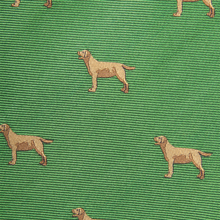 Woven Yellow Lab Bow - Green